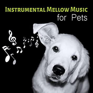 Instrumental Mellow Music for Pets - Calming Down Nature Sounds to Relax Your Dog & Cat When They are Alone at Home, Soft Melodies for Puppies & Kittens That Will Keep Them Company