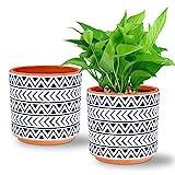 Ceramic Plant Pots Set of 2, DeeCoo 5.5 Inch Flower Pots Set, Round Planter Pots Indoor, Planter Set with Drainage Hole, Clay Succulent Pots for Cactus, Succulent, Snake Plants, Bamboo, Outdoor Plants