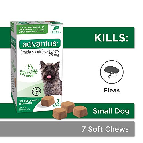 Bayer Animal Health Advantus (imidacloprid) Oral Dog Flea Treatment, Soft Flea Chews for Dogs 4-22...