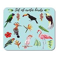 マウスパッド美しいエキゾチックな熱帯鳥のリアルなコレクションコンゴウインコオウムピンクフラミンゴオオハシウドヤツガシラマウスマットマウスパッド