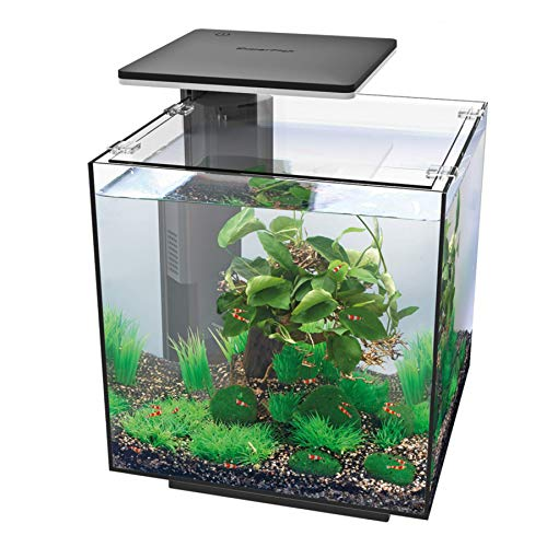 Superfish Qubiq Aquarium 30 with LED Lighting - Black