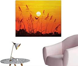 Tudouhoho Birds Funny Poster Bulrushes Against Sunlight Over Sky in Sunset with Flying Bird Theme Wildlife Image Photo Wall Paper Yellow Red W28 xL20