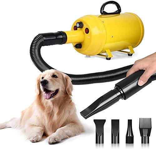 Nieuw professioneel merk Pet Fön set hond kat grooming droger blazer dubbele motor grote kleine dieren wasdroger 2000 W dsnmm 1