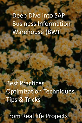 Deep Dive into SAP Business Information Warehouse (BW): Best Practices, Optimization Techniques, Tips & Tricks from Real life Projects (English Edition)