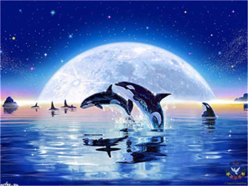HU0QWPKU De dolfijn springend op de sterrenheldere maan lichtzee 5D DIY diamant tekening ronde boormachine borduurwerk kristal strass pasta kruissteek decoratie 50 cm x 60 cm.