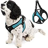 Gooby Escape Free Easy Fit Harness - Turquoise, Small - No Pull Step-in Patented Small Dog Harness with Quick Release Buckle - Perfect On The Go No Pull Harness for Small Dogs or Medium Dog Harness