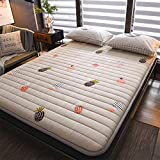 Doble Tatami Colchón Futón,colchón Plegable Tatami Futons Japoneses,Dormitorio Habitación Tatami Estudiante,colchón Futon No-resbalón 4cm A 180x200cm(71x79inch)