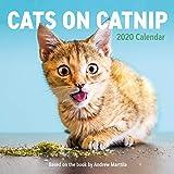 Cats on Catnip Wall Calendar 2020