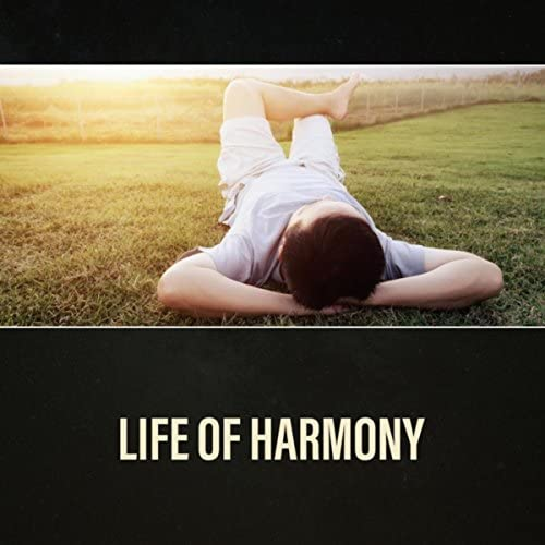 Life of Harmony Anti Stress Therapy Anxiety Cure Panic Attacks Relief Calming Down product image