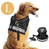 DAMIGRAM Perros Pecho de Arnés, Reflectante Antitranspirante Acolchado Seguridad Chaleco Cabestro Cinturón De Seguridad de Perro para Ejercicio de Caminar Formación Corriendo (L)