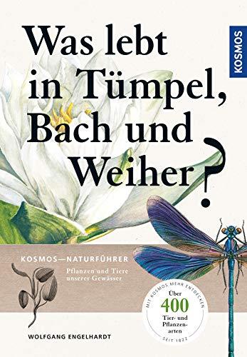 Was lebt in Tümpel, Bach und Weiher: Pflanzen und Tiere unserer Gewässer