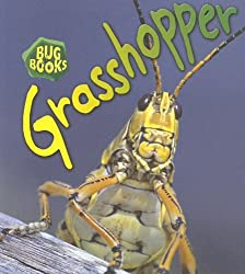 Grasshopper (Bug Books)