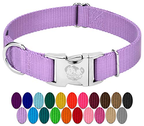 Country Brook Design - Vibrant 26 Color Selection - Premium Nylon Dog Collar with Metal Buckle (Large, 1 Inch, Lavender)