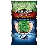 Pennington 100526673 Smart Seed Sun & Shade Mix, Green