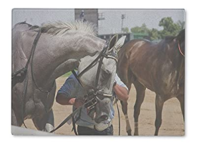Gear New Glass Cutting Board and Serving Dish, Race Horse, 5676943GN