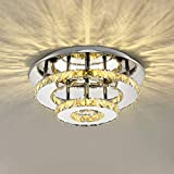 Lampara Techo de Cristal 36w, Lámpara de Araña de Acero Inoxidable, Iluminación LED para Salon/Dormitorio/Pasillo/Comedor Blanco Cálido 3500k 4680 Lumens ø30cm * H15cm
