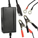 Battery Charger, 12V 5A Portable Lead Acid Battery Smart Charger Maintainer - Black