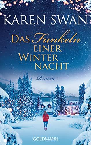 Das Funkeln einer Winternacht: Roman