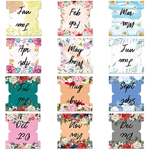 240 Pieces Colorful Monthly Adhesive Tabs Planner Stickers Accessories Budget Stickers Decorative Monthly Index Tabs for Office Study Planners Organizations