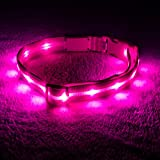 Blazin' Safety LED Dog Collar – USB Rechargeable with Water Resistant Flashing Light – Small Pink