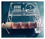 M3 Decorium Tuberes de Hormigas Transparentes Castillo de Granja Torre Torre Hormiga Hormiga Hormigas en Vivo No Incluidas para niños Sientífico Nature Learning (Color : 30mm Tubes)