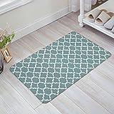 """Indoor Doormat Stylish Welcome Mat Medium Turquoise Quatrefoil Geometric Entrance Shoe Scrap Washable Apartment Office Floor Mats Front Doormats Non-Slip Bedroom Carpet Home Kitchen Rug 23.6""""x15.7"""""""