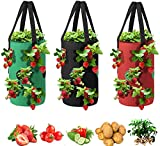 Grow Bags 3 Gallon for Strawberry Vegetables 12 Planting Holes, Sturdy Hanging Handle Thickened Breathable Felt Cloth, Plant Grow Bag for Carrot Onion Tomato Potato Roses