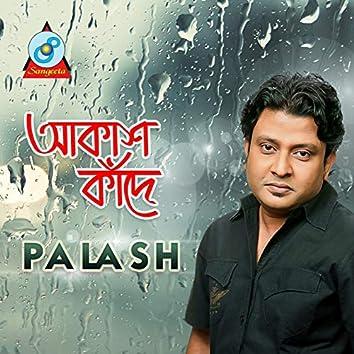Akash Kade