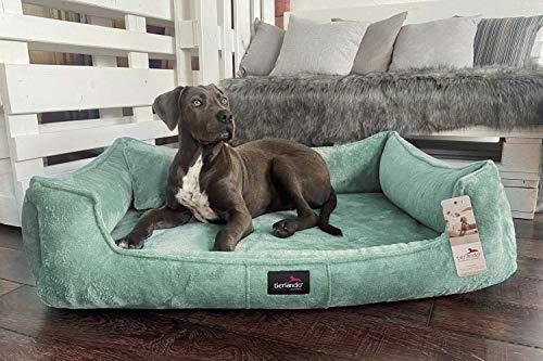 tierlando® Orthopädisches Hundebett Franklin | Hochwertiges Hundesofa | Kuscheliger Teddy-Stoff XL+ (130x100 cm) | 11 Mint