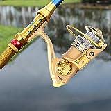 DAUERHAFT Dorado con Mango de Metal con Interruptor Anti-Retroceso El Brazo oscilante se Puede intercambiar Carrete Giratorio, para Amantes de la Pesca(Model 3000)