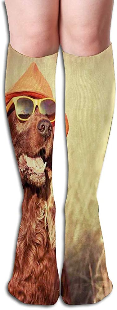 Men's and Women's Funny Casual Combed Cotton Socks,Funny Retro Irish Setter Dog Wearing Hat and Sunglasses Humor Joy Picture
