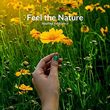 Feel The Nature - Healing Ambiance
