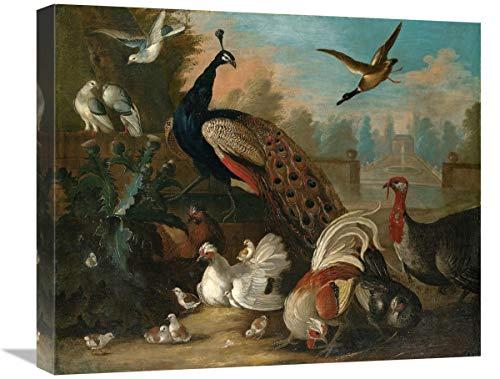 Global Gallery Lienzo con diseño de Pavo Real y Otros pájaros, 22...