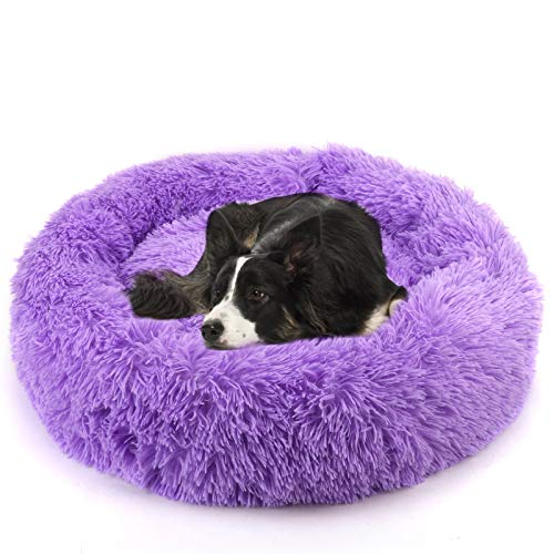 Dog Bed for Large Dogs Purple
