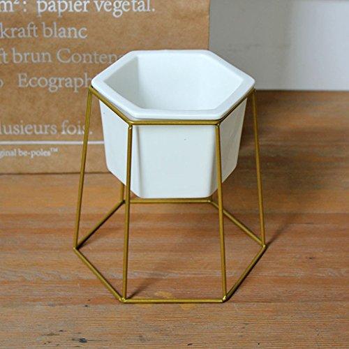 Yxsd Stand de Fleurs Moderne en Fer forgé étagère en métal, Pot de Fleur en céramique Fleur Plante Verte Bureau en Pot Plante en bonsaï Stand (Color : Gold)