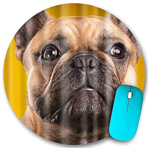 N\A Tappetino per Mouse Rotondo in Gomma Antiscivolo, Simpatico Cagnolino a Tema Bulldog Francese, Tappetino per Mouse Impermeabile Resistente Desktop da Ufficio personalità 7,9 'x7,9'