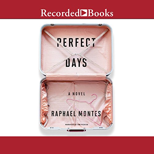 Perfect Days audiobook cover art