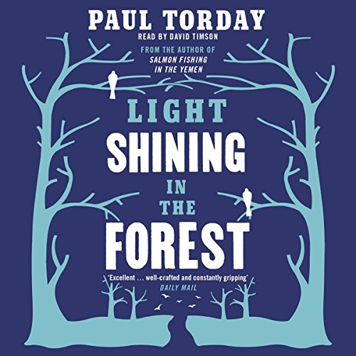 Light Shining in the Forest audiobook cover art