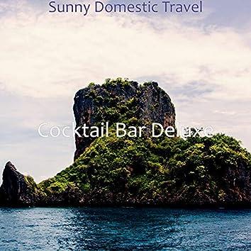 Sunny Domestic Travel