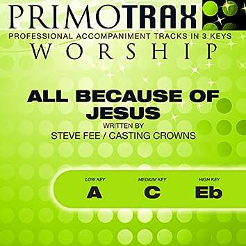 All Because of Jesus (Worship Primotrax) [Performance Tracks] - EP