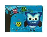 Búho lindo de la libreta colorida con Velcro Flap (Blue Night Owl)