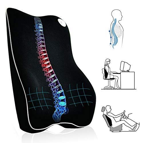 Payanwin Lumbar Support Pillow/Back Cushion, Memory Foam Orthopedic Backrest for Car Seat,Office/Computer Chair and Wheelchair,Ideal Ergonomic Back Pillow for Back Pain Relief (M, Black)