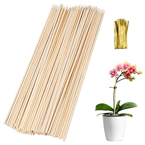 Lifreer 100PCS 40cm Plant Support Sticks, Reusable Bamboo Plant Stakes Garden Plant Flower Canes with 100PCS Gold Metallic Twist Ties for Home Garden