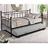 Daybed with Trundle Twin Size Metal Frame Daybed and Roll Out Trundle (Black)