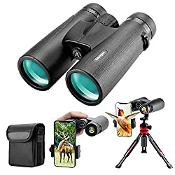 in budget affordable Powerful 12×42 binoculars – lightweight binoculars that are clearly visible in the dark …