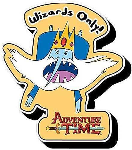Aquarius Adventure Time - Ice King Funky Chunky Magnet by Aquarius