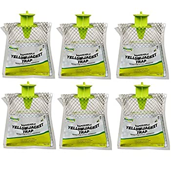 RESCUE! Disposable Summer Yellowjacket Trap - Western Time Zones - 6 Traps