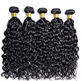 FW Hair Brazilian Water Wave Bundles14 16 18 20inches 290g Unprocessed Water Curly Human Hair Weave Brazilian Wet and Wavy Hair Bundles Natural Black Color