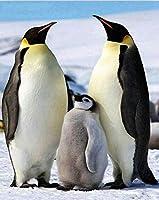子供と大人のためのジグソーパズルに1000個のピースを入れた超難しいペンギンの日常生活の木製パズル29.5 x 19.7インチ/ 75 x 50 cm
