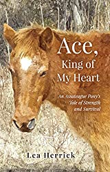 Ace, King of My Heart | Ocean City MD Fiction Books
